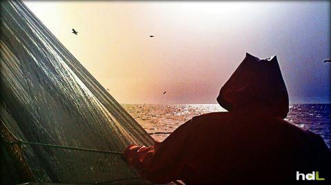 HDL Día de pesca en Portugal