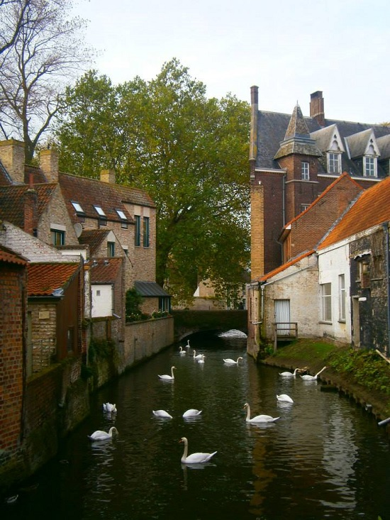 images_0brujas