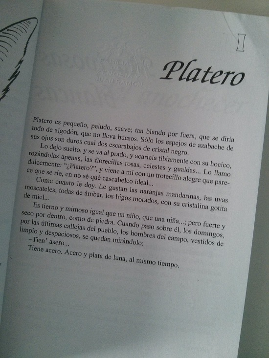 images_0platero