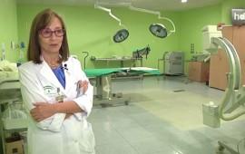 Su abuela enfermó de cáncer cuando ella era una adolescente. Le aplicaron un tratamiento de radiología y su abuela se curó. Esa experiencia fue lo que hizo que Eloísa Bayo decidiera dedicarse a la Medicina más tarde y seguir la especialidad de Oncología. Hoy, la Doctora Bayo, Medalla de Andalucía en 2014, es la responsable del departamento de oncología radioterápica del Hospital Juan Ramón Jiménez y dirige el Plan Integral de Oncología de Andalucía.