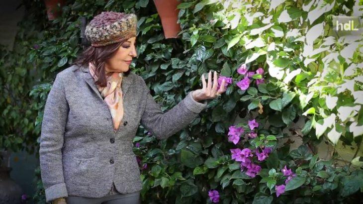 La cordobesa Blanca del Rey fue una bailaora precoz. A 6 años empezó a demostrar que el don de artista lo lleva en la sangre y fue entonces cuando comenzó una trayectoria que le llevaría por todo el mundo. A los 14 debutó en un tablao de flamenco de Madrid y consiguió hacerse hueco en el mundo del flamenco. En el Corral de la Morería, uno de los templos sagrados del flamenco, fue donde se consagró, llegando a ser considerada por los entendidos como la mejor bailaora del momento en 1984. A lo largo de su trayectoria Blanca del Rey ha recibido multitud de distinciones, siendo para ella una de las más importantes la Medalla de Oro a las Bellas Artes. Su Córdoba natal siempre ha sido la inspiración de su arte. Hoy en día está retirada del baile, pero no desvinculada del flamenco, ya que ejerce como coreógrafa en la actualidad.