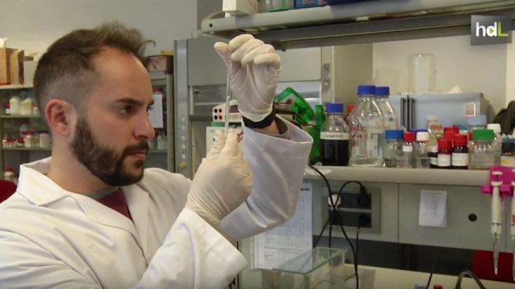 Investigadores de la Universidad de Granada y del Consejo Superior de Investigaciones Científicas patentan una nueva tecnología que permite desarrollar una insulina más estable para el tratamiento de la diabetes. Estas mejoras se producen después de transformar la insulina a estado cristalino en un gel.