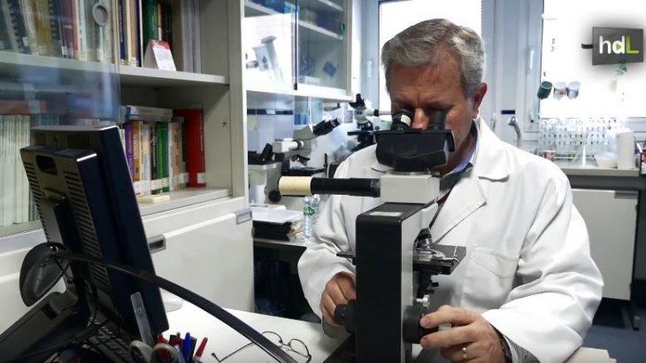 Reyes Peña, fauna microscópica para la regeneración del suelo