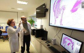 El sistema de Patología Digital del Complejo Hospitalario Universitario de Granada permite el estudio del 100% de las biopsias generadas en todos los hospitales de la provincia. Sus escáneres de última generación lo convierten en un referente en Europa. Estos escáneres sustituyen a los microscopios y facilitan la labor de diagnóstico de los especialistas.